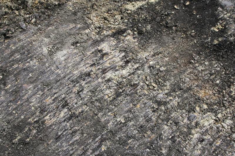 asphalt and mud