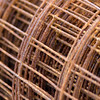 Rusty Welded Wire_SS6536