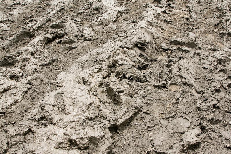 Dried mud_SS85267