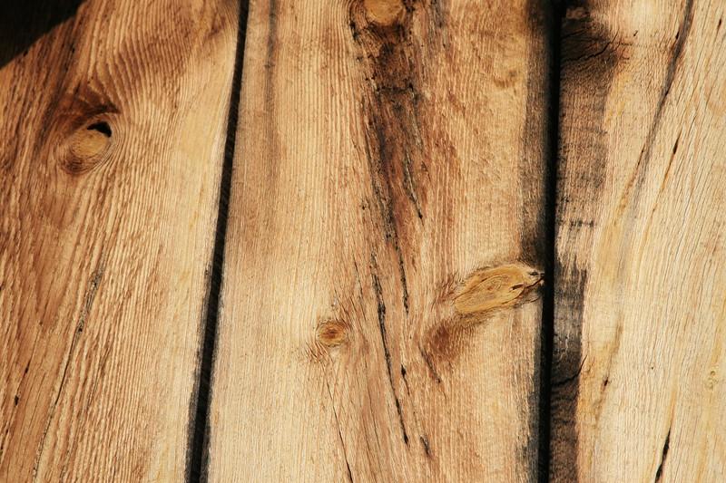 rough cut wood plants