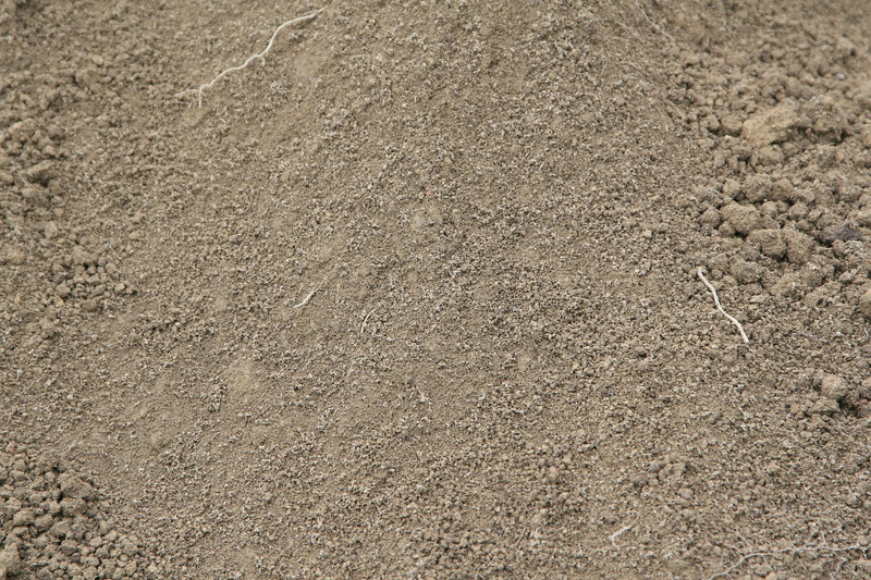 brown dirt and gravel