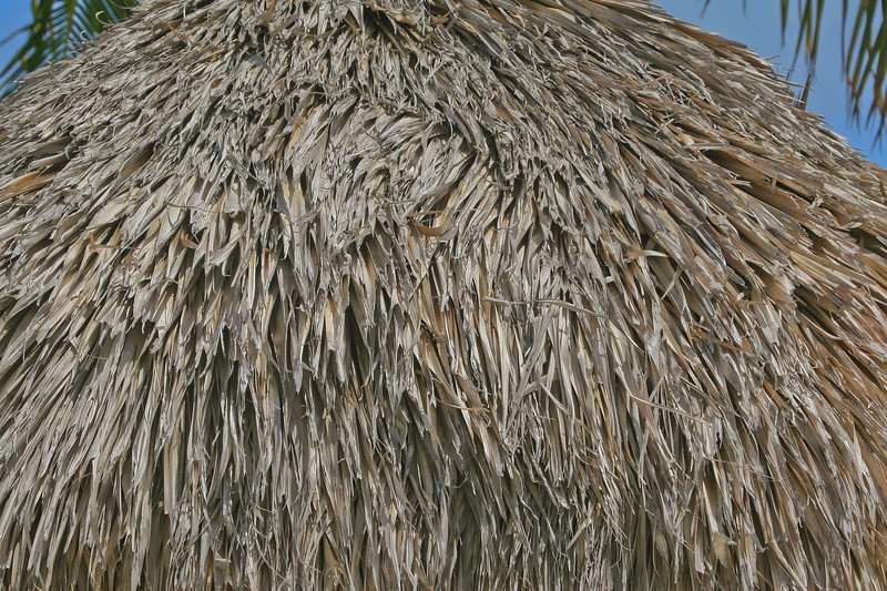 Roof made of palm fronds, a chickie hut