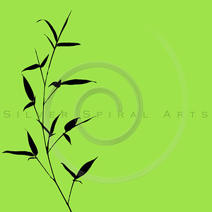 Bamboo Silhouette on Green Background