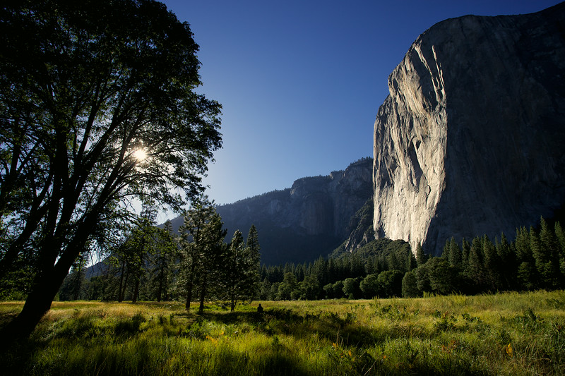 A solitary figure enjoys the beauty of Yosemite in a meadow beneath El Capitan