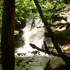 I pull 8 creek crossings and reach the bottom of Wildcat Falls.
