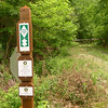 A brand new trailpost in Oldfield Gap.