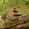 I set up a hippie cairn for the Sierra Club boys on the Deep Creek trail.