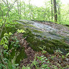 The actual Rock Creek Knob on the Haoe Lead trail.
