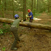 Brandon and Stephanie using the crosscut saw on the Bald River trail.