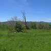 A panoramic view from the Bob looking towards Huckleberry and Haw Knobs.