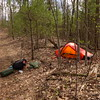 About a mile north of Unicoi Gap I clear a patch of poison ivy (and pay for it later) and set up my 3 lb Hilleberg Akto tent, a big weight reduction from my 9 lb Keron.