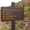The BMT trailsign in Unicoi Gap near the ugly powerlines.