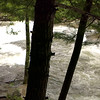 VIDEO:  Baby Falls on Tellico River (wmv)