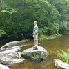 A freshman student studies Snowbird Creek at Middle Falls.