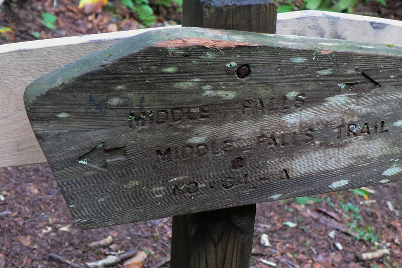 The forest service put in a new 64A sign but left the old Middle Falls sign.