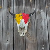 Buffalo skull overlooking the yard.