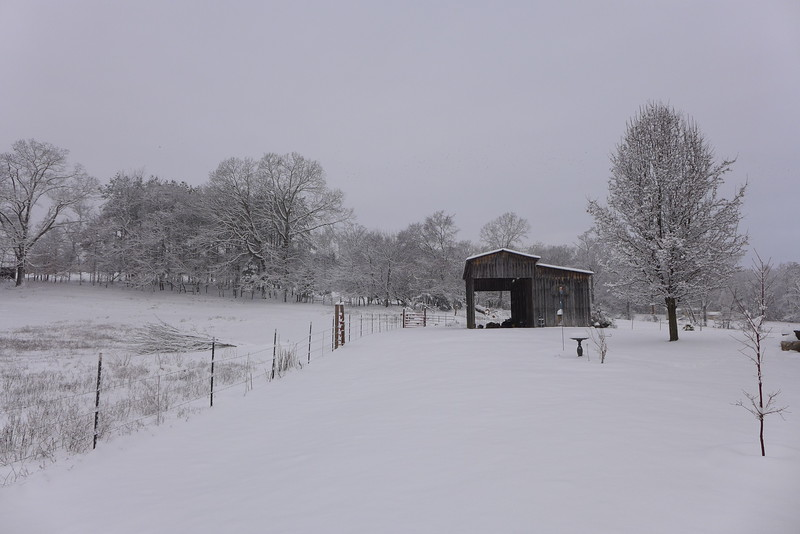 Looking back at the barn in the snow.