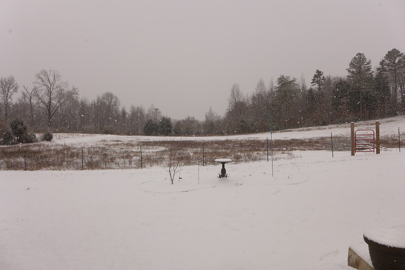 The backyard and horse pasture with a little bit of snow.