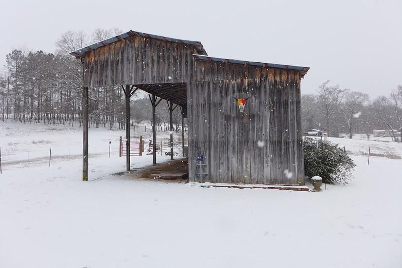 The barn with the buffalo skull.