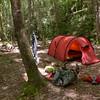 Home sweet home in Wildcat Camp.