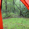Looking out the tent at the end of the Pine Ridge trail showing where it junctions with Fodderstack Ridge trail.