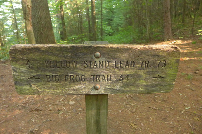 Day 3 is a designated easy day but not a zero so I pack up and take Big Frog Trail 64 to this trailsign in Low Gap.  Like I said, it's an easy day in the heat.