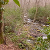 My journey on the Nutbuster trail begins on Leg 1 next to Slickrock Creek.