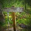 Where Fork Ridge trail meets Big Frog trail.