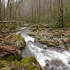 This pic is what the North Fork is supposed to look like---taken on my last trip in March.