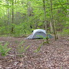 I reach Stump Camp and check out Patman's tent with Susan inside.