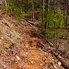 The recently leveled Rocky Flats trail worked by the Crosscut Mt Boys.