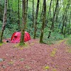 I pull one crossing of North Fork Creek and set up camp by crossing 2.