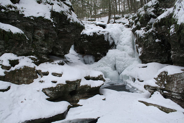 Ricketts Glen 1/25/09