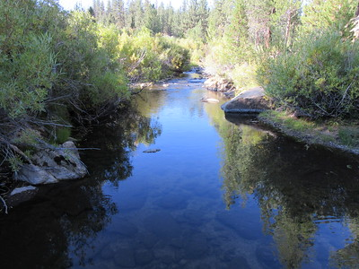 Little Kern River (at Sagebrush Gulch)(6,085); Golden Trout Wilderness, Sequoia National Forest, September 26, 2014.