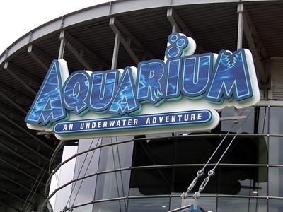 Yellowstone - Denver Aquarium 09