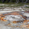 Extreme bacteria that can live in super hot water are what gives the hot springs their color.