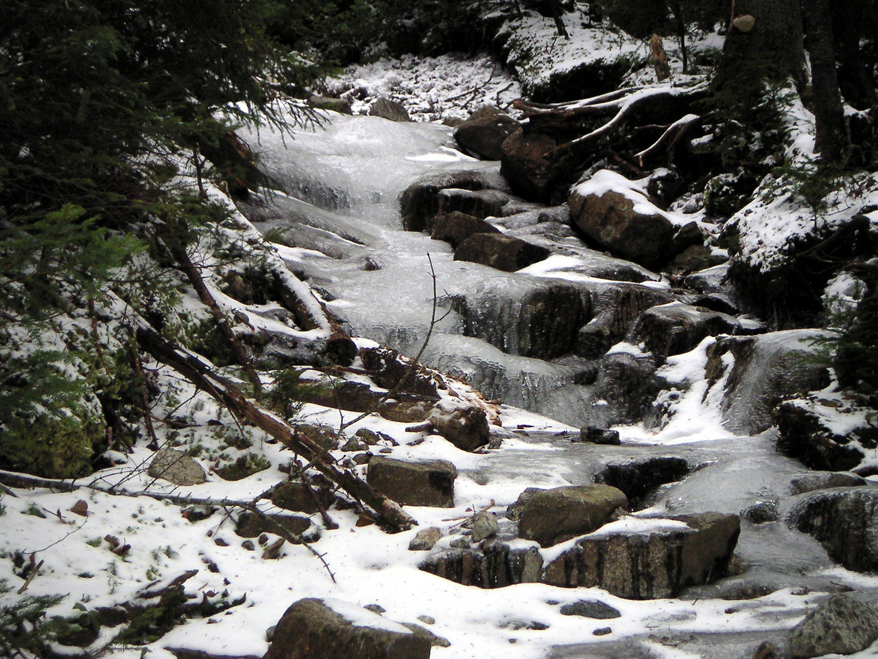 This is what the trail looked like
