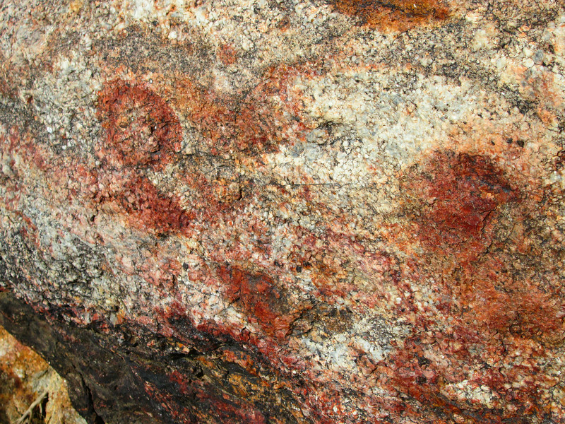 Petroglyphs on the way to Indian Canyon, a nice day hike from Sheep's Canyon.