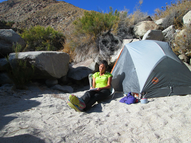 My daily journal entry at my favorite beach camping spot next to the sycamores in Sheep's Canyon.