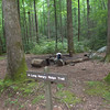 Campsite #92 - Upper Flats