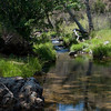Along Coyote Creek, where we did most of our water gathering.