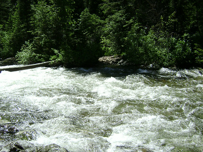 Since we were headed to Tin Cup Lake we would have had to ford the creek 4 times...this was the first crossing!!!  NO WAY!