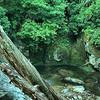 Raven Fork river