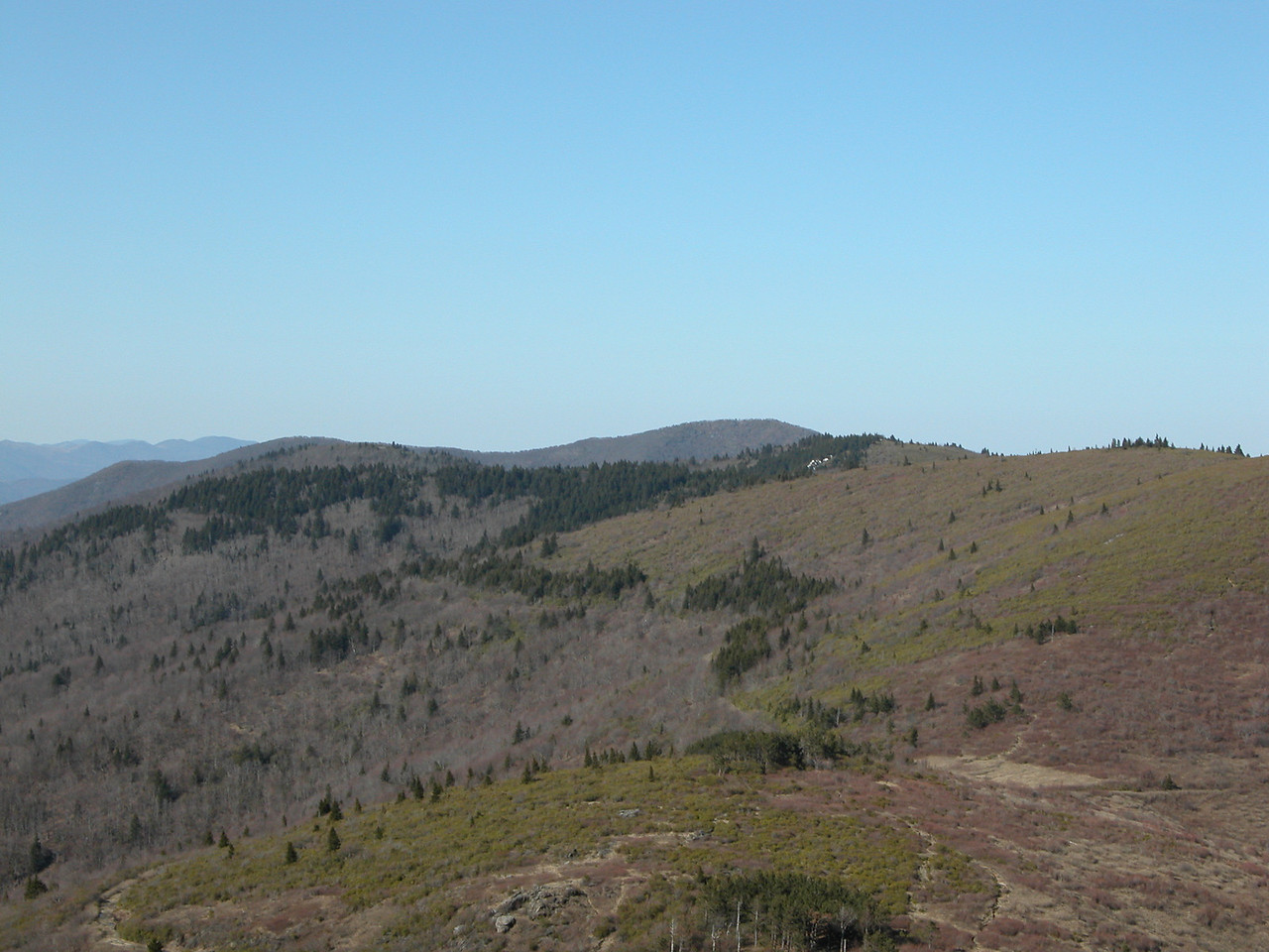 Looking N. to Shining Rock (white quartz outcrop in trees) from Tennent Mtn. Cold Mtn. behind Shining Rock<br /> another part of failed attempt at producing a pano from the summit of Tennent