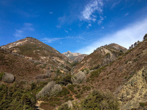 Looking back up at Cone Peak (~5100ft elevation) from Hwy 1.