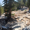 Last major switchback on the San Jacinto trail before arriving at the top.