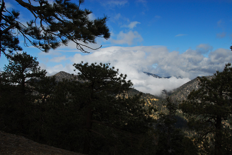Clouds rolling in over Islip Saddle today.  Mt. Islip (8,250 ft.) on the left peering through the trees.