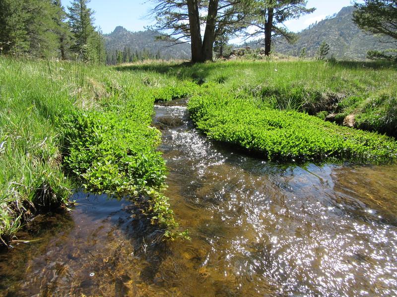 ... Manter Creek where ...