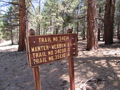 I started from the trailhead on the east side of Big Meadow (7960') and headed to Manter Meadow.