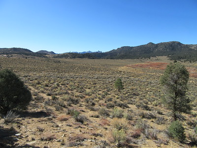 ... crossing a long stretch of open range where ...